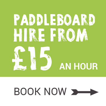 paddleboard hire